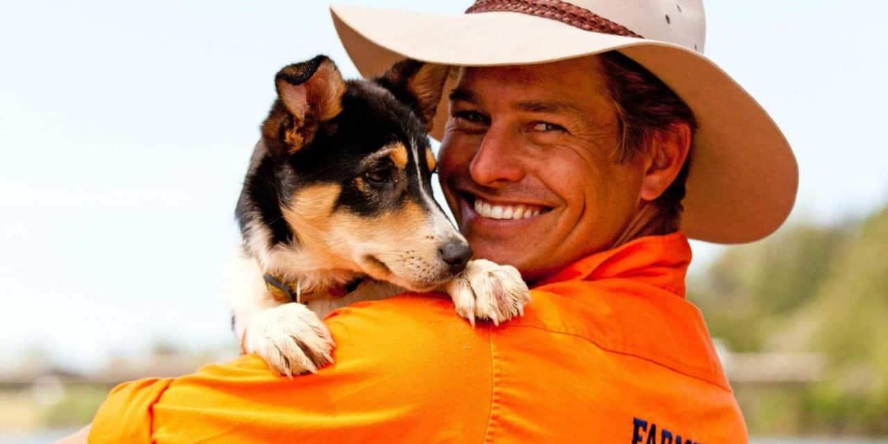 Farmer Dave works with his dog, Matilda