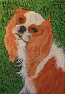 Tasmanian artist Felicity Edwards and her feline muse