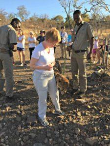 Ambassador cheetah and his handler, who's the boss?