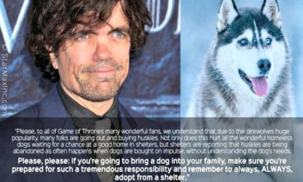 Game of Thrones star asks fans stop buying Huskies