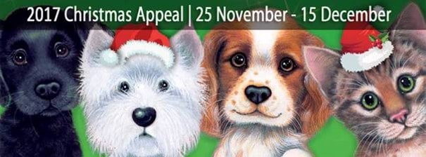 Give a Dog a Bone, Keep Kitty Happy Christmas Appeal 2017