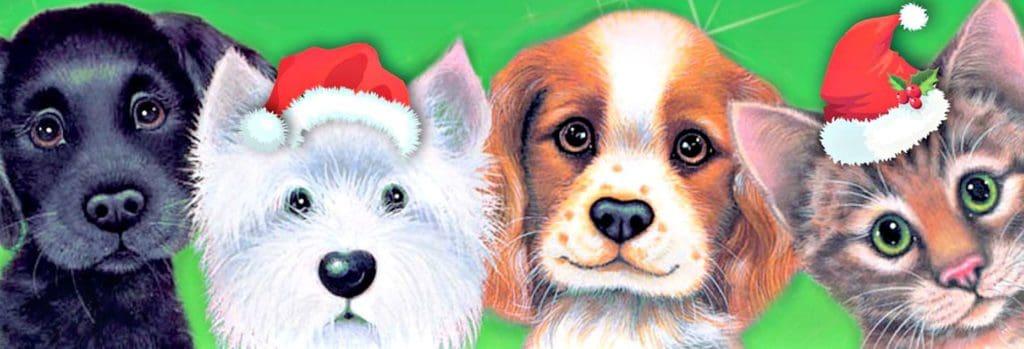 Give a dog a bone, keep kitty happy Christmas Appeal