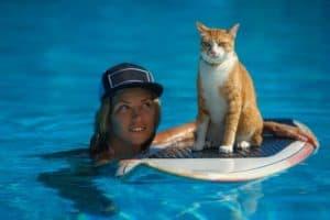 pet-friendly Australia Day