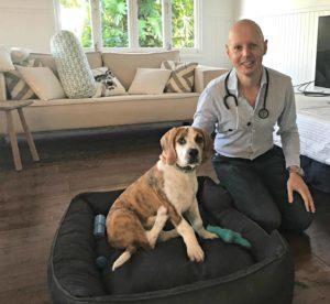 New charity combats killer puppy virus