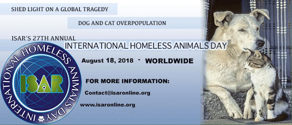 International Homeless Animals' Day 2018