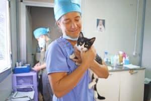 VBB veterinary volunteers in Sardinia. Photo credit Ulla Korterman