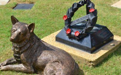 Australian War Animal Day