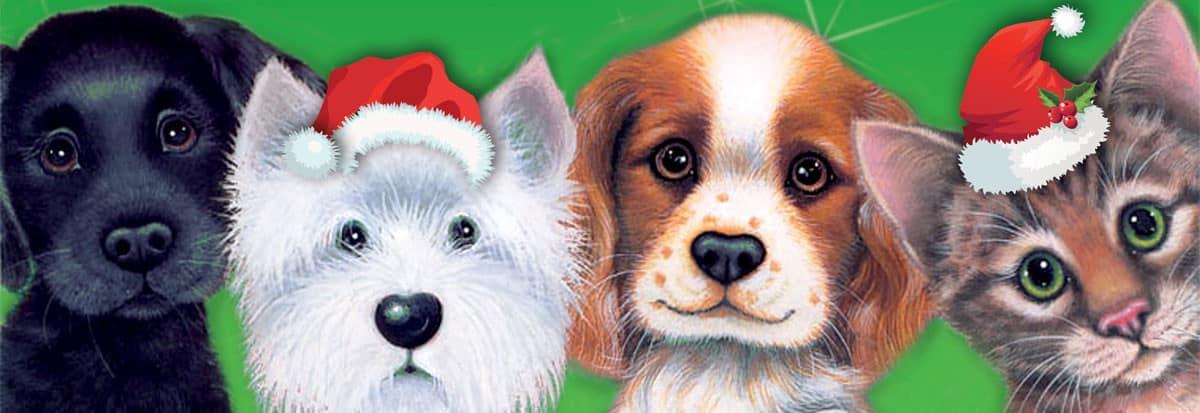 Give a Dog a Bone Keep Kitty Happy Christmas Appeal 2019