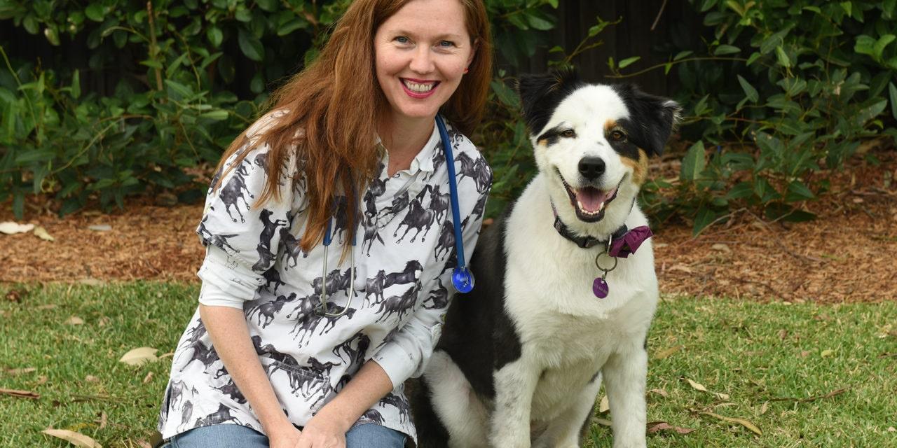 Covid puppies phenomenon with vet Dr Anne Quain